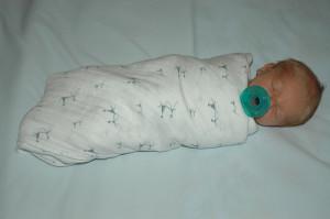 swaddled baby